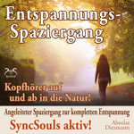 Entspannungsspaziergang Hörbuch  - SyncSouls